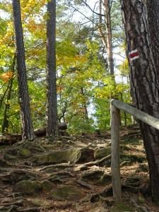 Wandelpad the golden trail