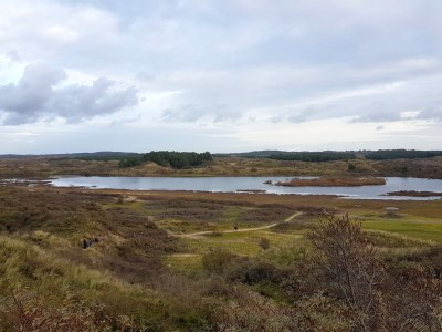 Vogelmeer NS Wandeling kennemerduinen