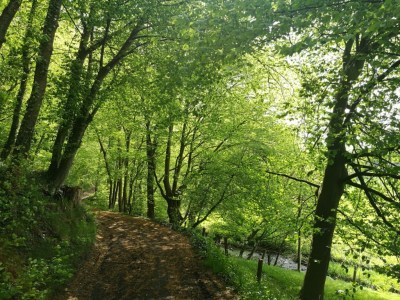 Wandeling rondom zuid-limburg