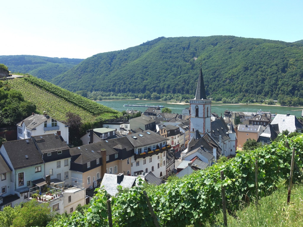 Uitzicht dorp