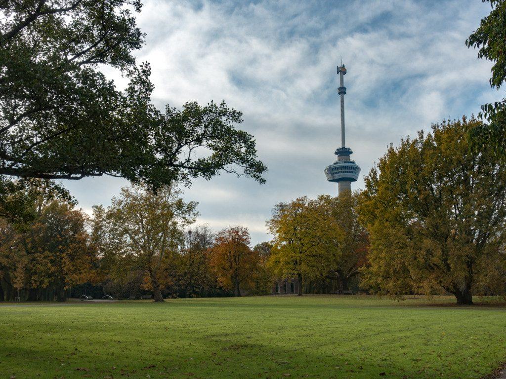 Park onder de Euromast Rotterdam in herfstkleuren