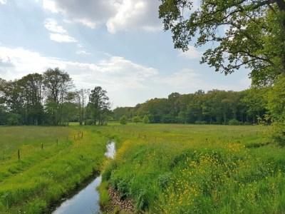 Uitzicht over een klein slootje en graslanden op de NS wandeling Vechtdal