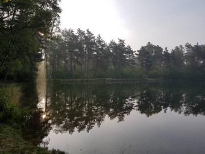 Zwemmeer bij zonsopkomst