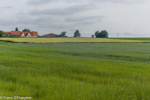 2018-06-24 Sint-Denijs-11