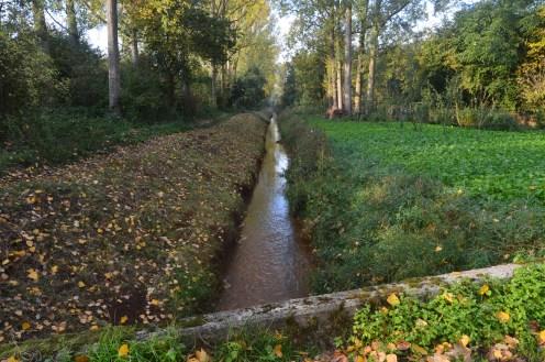 Heusden-Zolder 16-10-2018 008