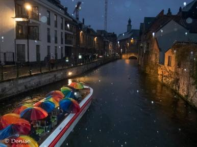 Gent by night-2841
