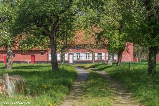 2019-04-22 Oostkamp-166