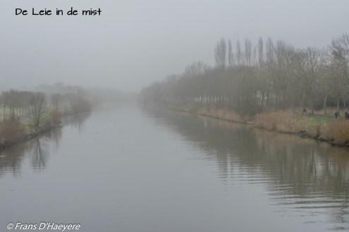 2020-01-25 Wevelgem-101