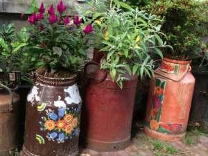Reinkenstraat melkbussen met bloemen