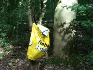 Plastic afvalzak aan boom