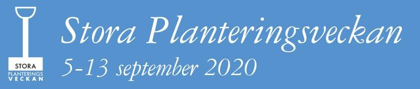 spv-banners-2020-1
