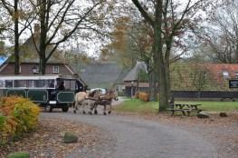 Westerbork-Orvelte 12 KM