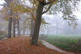 'Landgoed Vennebroek'