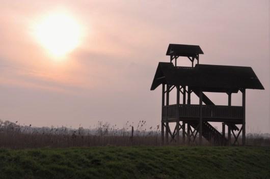 Vogelkijkhut Oostpolder Glimmen