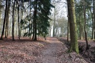 Friesland: Olterterp