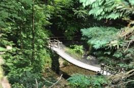 Lydford Gorge Dartmoor