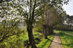 Achterhoek Kerkenpaden rondom Zieuwent