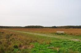 Wandelbankje Oktober 2017 Duurswouderheide Friesland