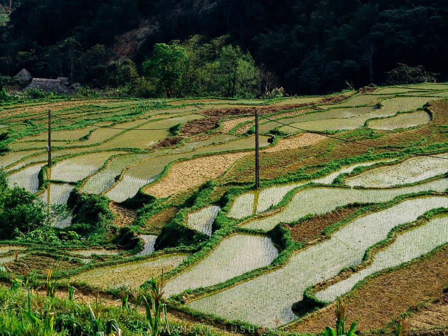 © Emily Lush 2018   Pu Luong Nature Reserve