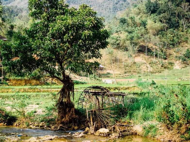 © Emily Lush 2018 | Pu Luong Nature Reserve