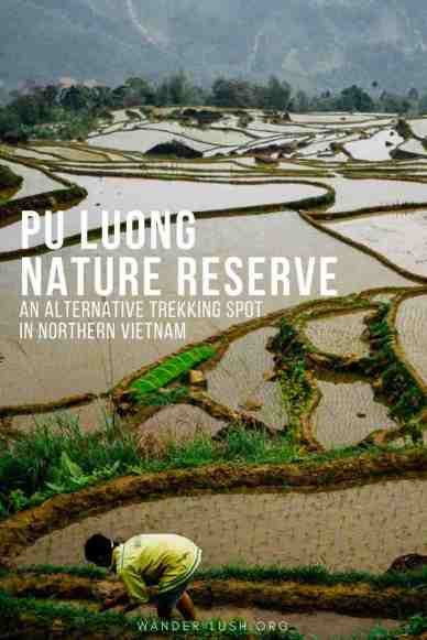 Looking for an alternative trekking and homestay spot in Northern Vietnam? Pu Luong Nature Reserve is more remote than Mai Chau—but offers a more authentic experience.