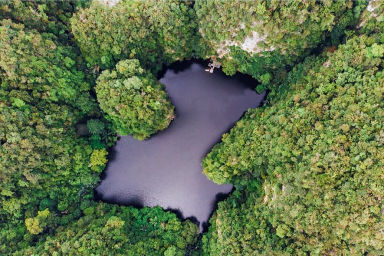 Aerial view of a black lake surrounded by green trees.