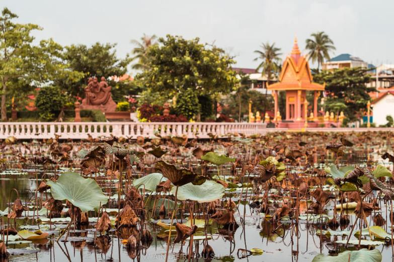 A pond filled with lotus leaves with a golden pagoda in the background.