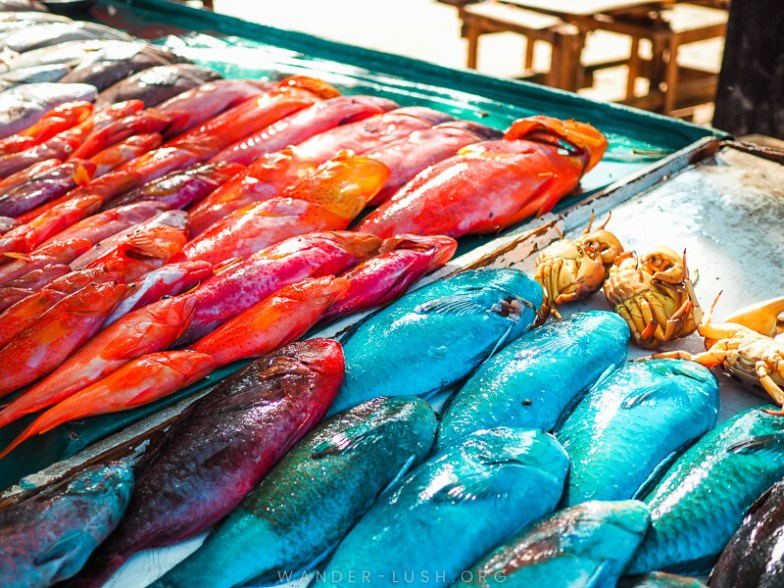 Blue and orange fish lying on the table at a fish market in Mauritius.