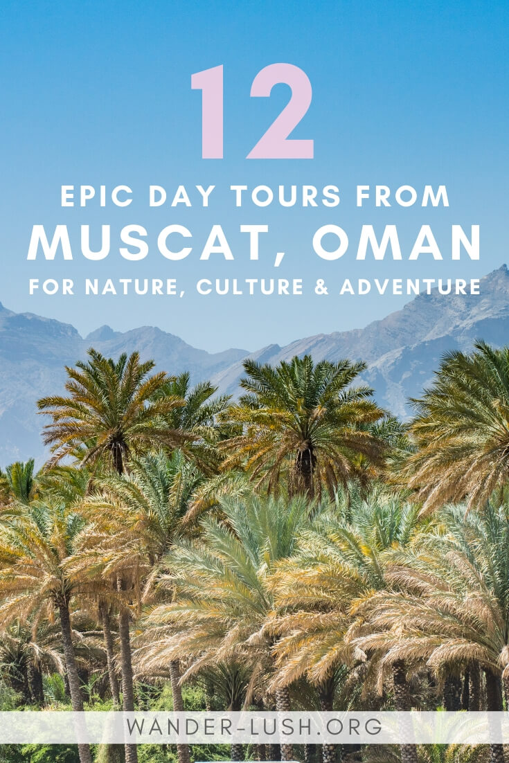 12 of the very best Oman tours (Muscat day tours), including Muscat cruise tours, nature tours, wadi tours and desert tours.