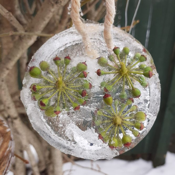 Frozen Beauty: Suncatchers & Ice Lanterns