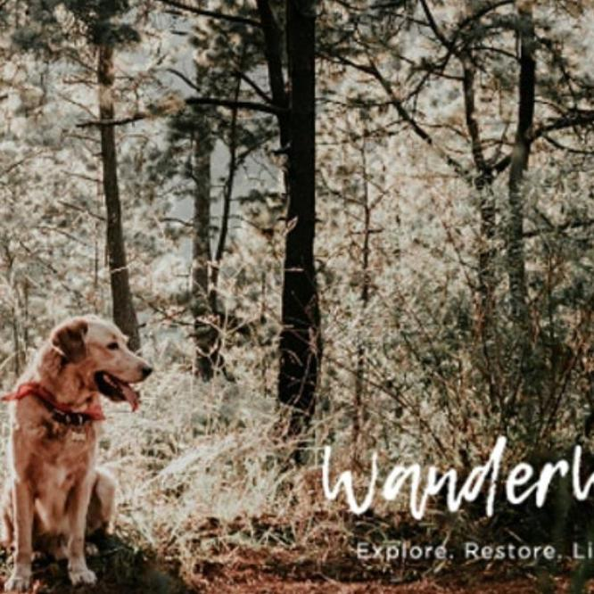 Mindfulness with Your Dog (August)