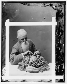 Hendley, John - wax worker- Agriculture Dept. (His art died with him) ca 1900