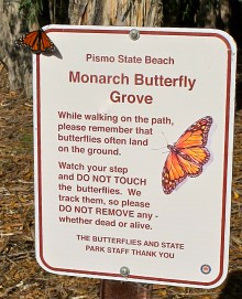 Monarchs like to emphasize the importance of good signage