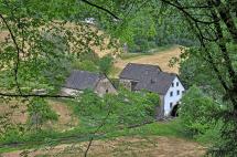 Wandern Vulkaneifel Lieserpfad