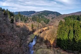 24-Manderscheider-Forst-Kiesberghuette-1000