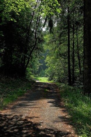 panoramaweg-9186