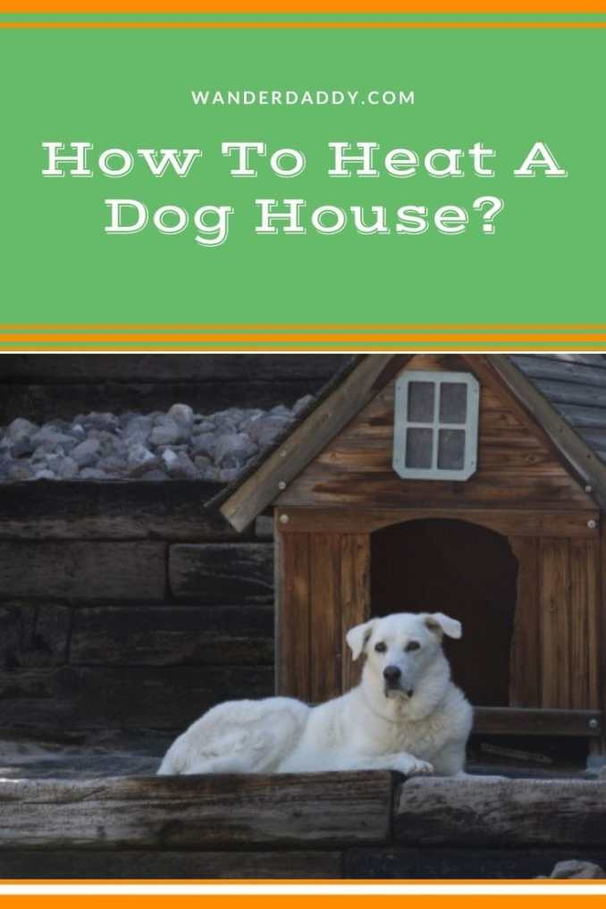 How To Heat A Dog House