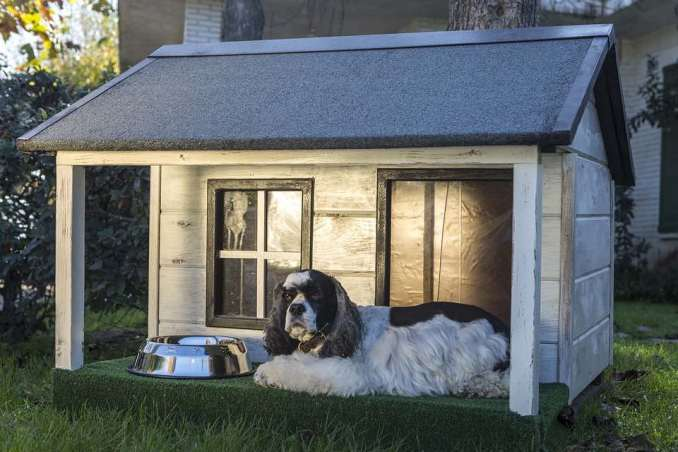diy-dog-house-heater