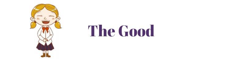 VIPKid - The Good