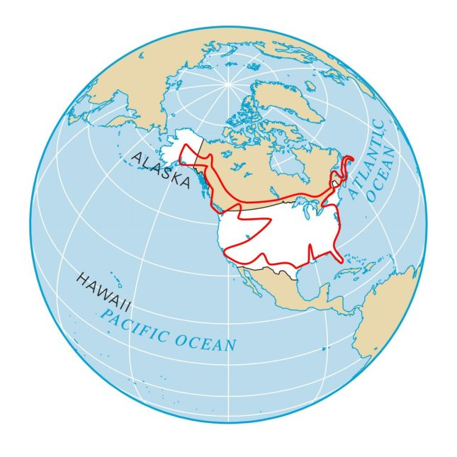 Nord Amerika Road Trip