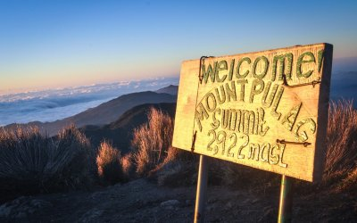 Mt Pulag : DIY Adventure Above the Sea of Clouds
