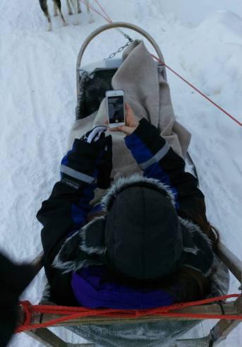Husky sledding in Finland