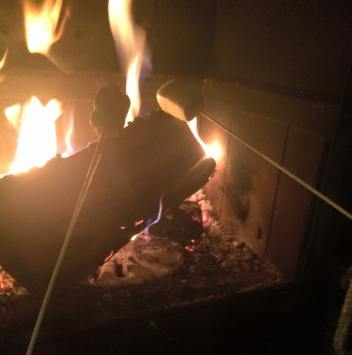 Toasting Marshmallows in Finland