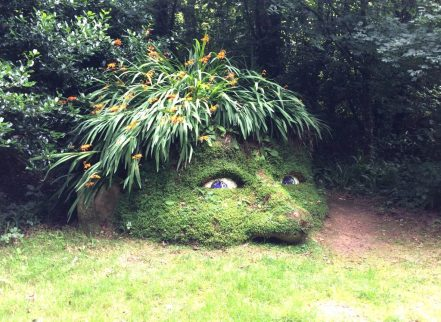 Day Trips from Newquay - The Lost Gardens of Heligan