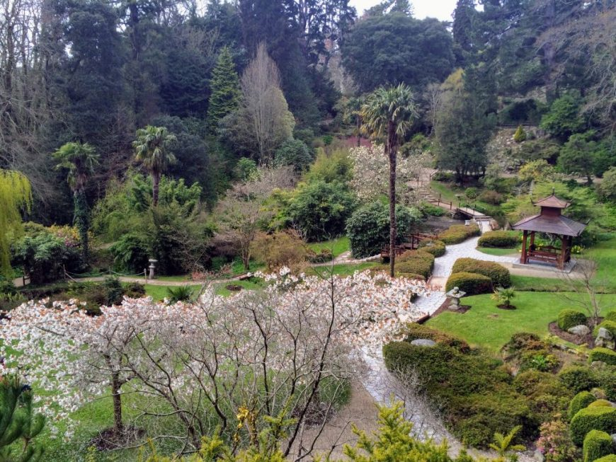 Japanese Gardens, Powerscourt Estate