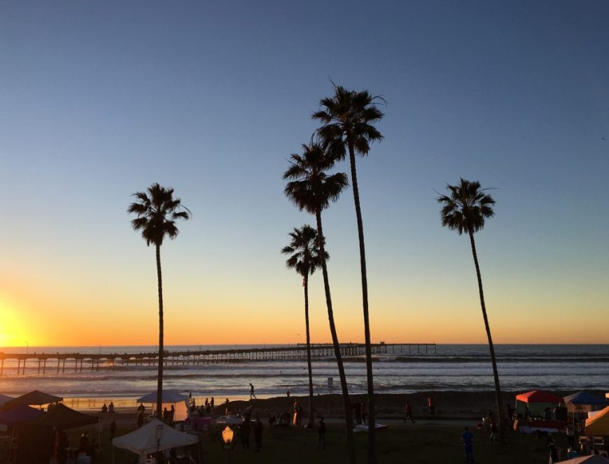 San Diego Sunset with Palm Trees