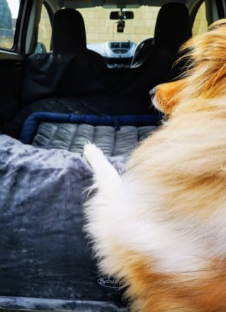 Scruffs Boot/Travel Dog Bed