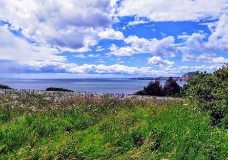 Views of Sidmouth, Devon