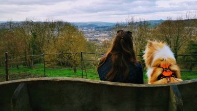 7 of the Best Dog Walks in Bristol You'll Both Love