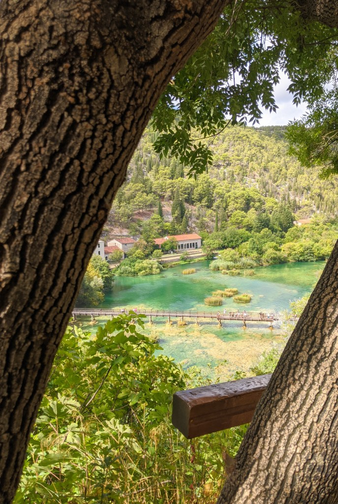 Looking through the trees at Krka National Park